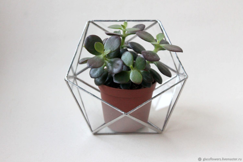 The Floriana. Geometric icosahedron Floriana silver, Florariums, St. Petersburg,  Фото №1