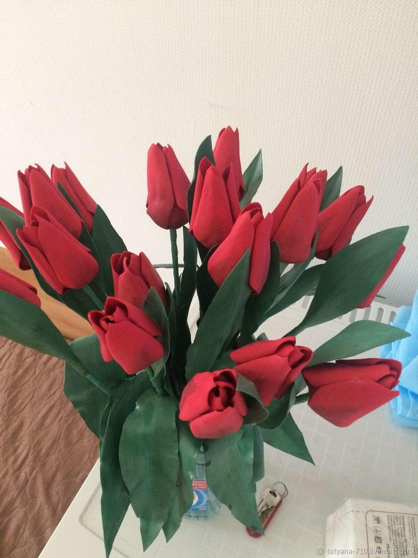 Тюльпан полевой, Вазы, Зимовники,  Фото №1