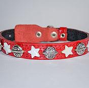 """Для домашних животных, ручной работы. Ярмарка Мастеров - ручная работа """"Для звезды!"""" - ошейник для собак. Handmade."""