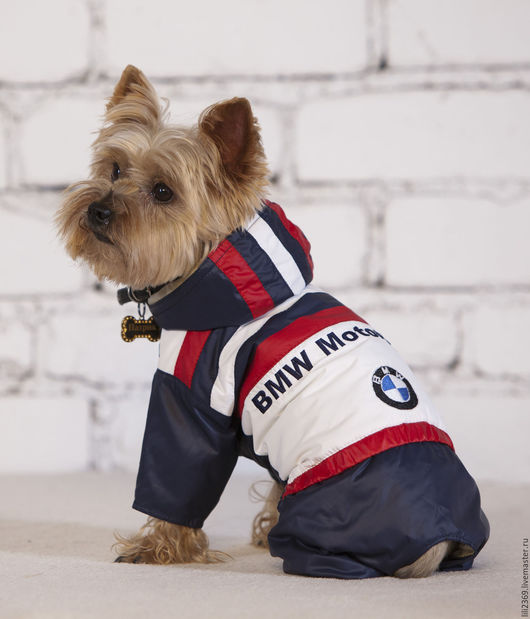 Одежда для собак, ручной работы. Ярмарка Мастеров - ручная работа. Купить Комбинезон для собаки Мотоспорт. Handmade. Комбинированный, Йоркширский терьер