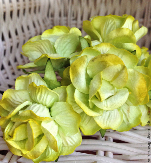 Открытки и скрапбукинг ручной работы. Ярмарка Мастеров - ручная работа. Купить Розы вьющиеся 5 см цвет Лайм. Handmade.