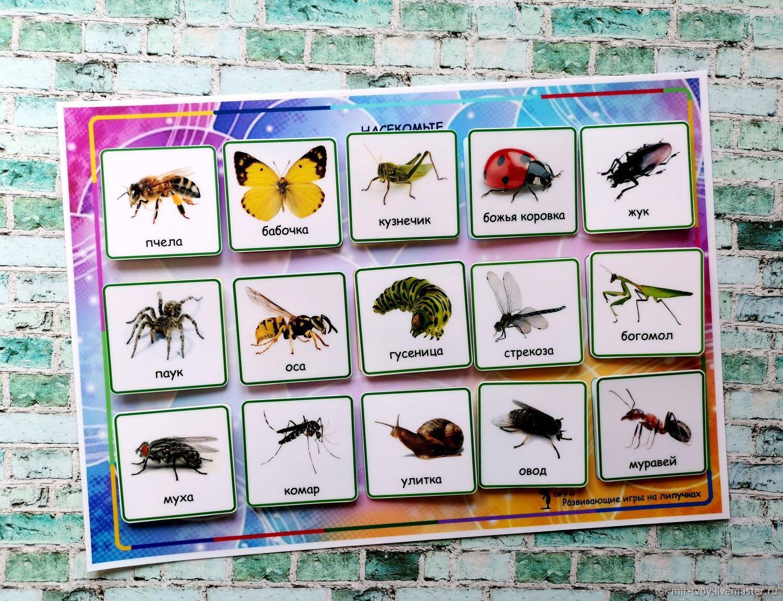 """Развивающие игрушки ручной работы. Ярмарка Мастеров - ручная работа. Купить Игры на липучках """"Изучаем насекомых"""". Handmade. Развивающие игры"""