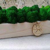 Вазы ручной работы. Ярмарка Мастеров - ручная работа Стабилизированный мох в кашпо. Handmade.