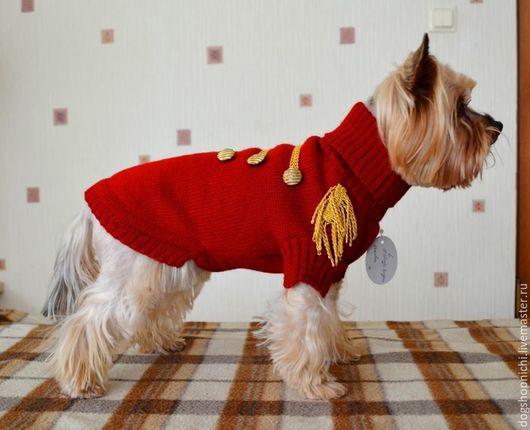 Одежда для собак, ручной работы. Ярмарка Мастеров - ручная работа. Купить Свитер для собаки Гусарский авторская работа. Handmade.