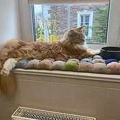 handmade. Livemaster - original item Bombon bed Mat for Pets. Handmade.