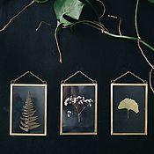 Цветы и флористика handmade. Livemaster - original item Herbarium in glass, set of 3 pieces. Handmade.