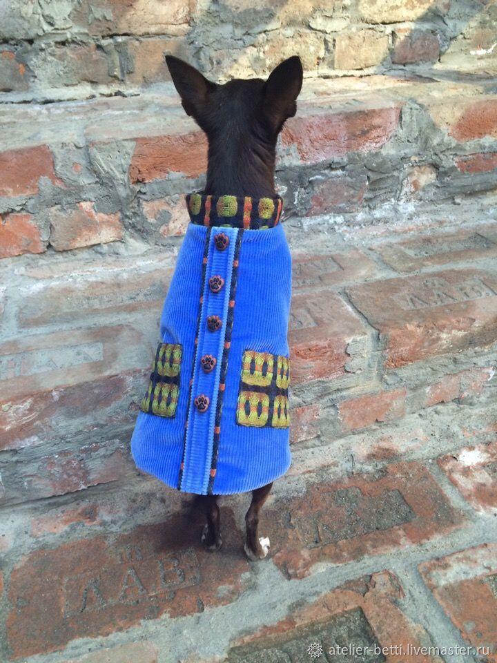 Одежда для питомцев: Попона из вельвета мужская, Одежда для собак, Санкт-Петербург, Фото №1