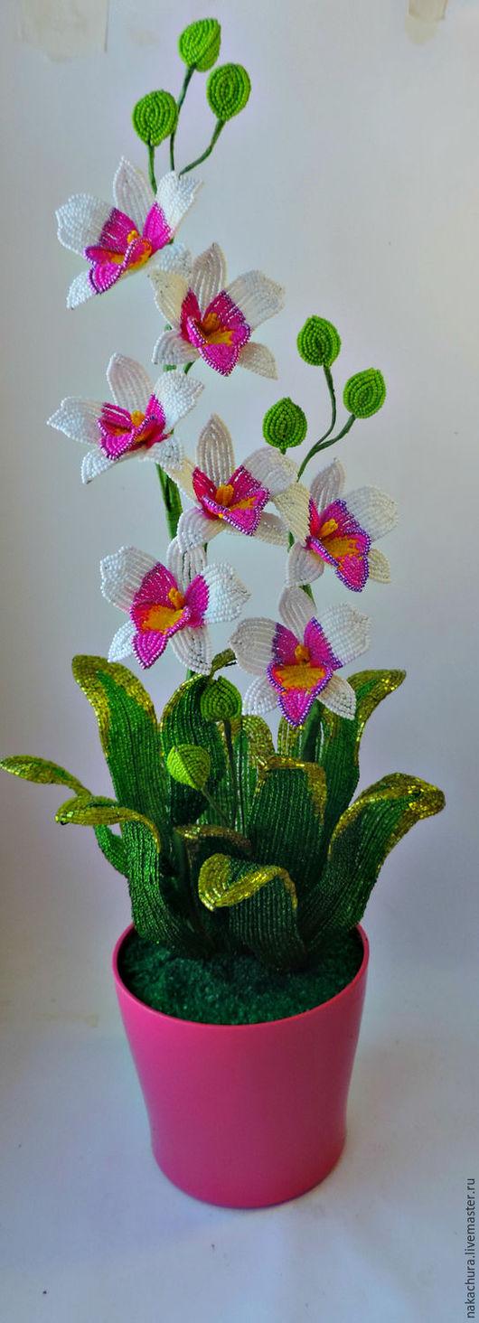 Цветы ручной работы. Ярмарка Мастеров - ручная работа. Купить орхидейка. Handmade. Комбинированный, орхидея фаленопсис, бисер чешский, гипс
