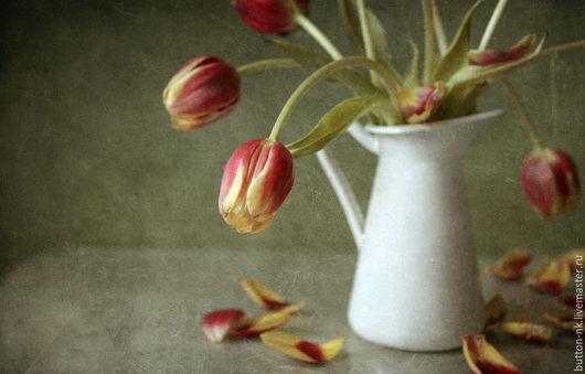 Фотокартины ручной работы. Ярмарка Мастеров - ручная работа. Купить Натюрморт фото, картина Теряют лепестки тюльпаны. Handmade. Оливковый