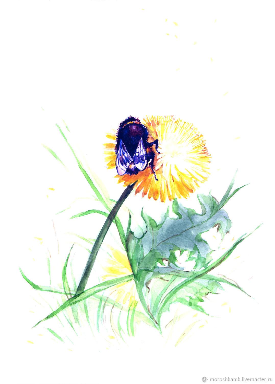 """Картины цветов ручной работы. Ярмарка Мастеров - ручная работа. Купить Акварель """" Майский шмель"""". Handmade. Цветы, весна"""