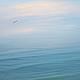 Этрета Север Франции. Морской пейзаж «Ла-Манш». Полное спокойствие на огромном просторе. Только небо и море – только цвет и свет! © Елена Ануфриева