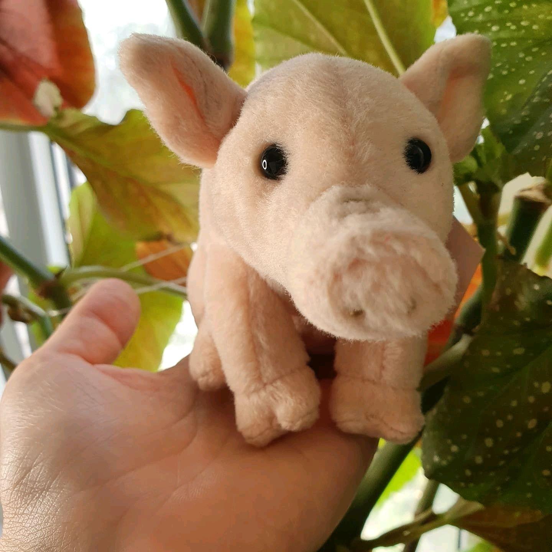 Маленькая хрюшка, свинка, Мягкие игрушки, Волгоград,  Фото №1