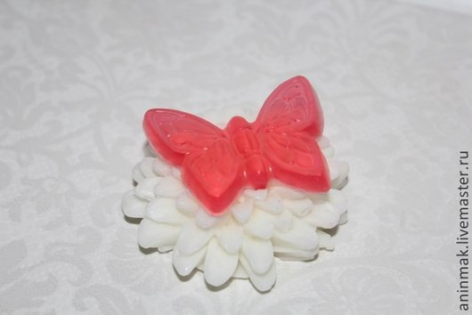 бабочка на хризантеме