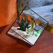 Флорариумы ручной работы. Ярмарка Мастеров - ручная работа Флорариум, геометрический террариум в наклонённом кубе, суккуленты. Handmade.