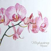 """Картины и панно ручной работы. Ярмарка Мастеров - ручная работа Акварель """"Ветка орхидеи"""". Handmade."""