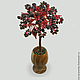 Tree pomegranate `Garnet happiness` in a vase of onyx