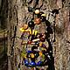 Лесные сокровища Хотите ли вы примерить образ таинственной лесной нимфы? Самобытный и наполненный духом летнего леса браслет-пружинка Гармоничное сочетание разноформатных бусинок создает поэзию цвета
