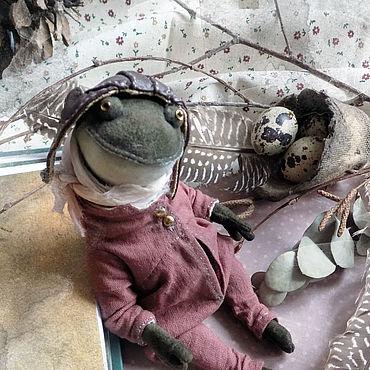Куклы и игрушки ручной работы. Ярмарка Мастеров - ручная работа Mr. Toud, жаба Тедди. Handmade.
