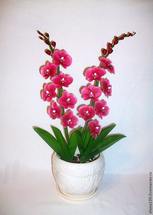 Цветы ручной работы. Ярмарка Мастеров - ручная работа. Купить Орхидея - керамическая флористика. Handmade. Фуксия, цветы, для интерьера
