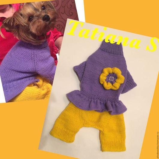 """Одежда для собак, ручной работы. Ярмарка Мастеров - ручная работа. Купить Комбинезон """"Цветочек"""". Handmade. Желтый, Вязаная одежда для собак"""