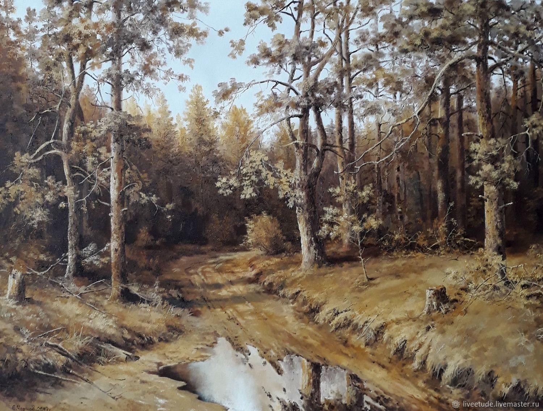 Oil painting Pescanoe the roads in sosnah Landscape Vladimir Chernov, Pictures, Stary Oskol,  Фото №1
