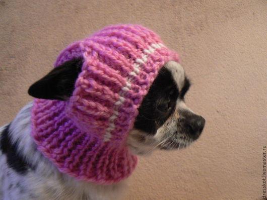 Одежда для собак, ручной работы. Ярмарка Мастеров - ручная работа. Купить Шапочка для маленькой собаки. Handmade. Розовый, шапочка спицами