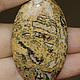 2694 Яшма леопардовая, размер 47х29х6,5мм, 450руб.