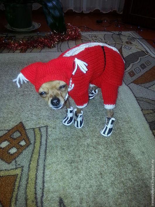 """Одежда для собак, ручной работы. Ярмарка Мастеров - ручная работа. Купить комбинезон для той-терьера """"Санта-Клаус"""". Handmade. для собаки"""