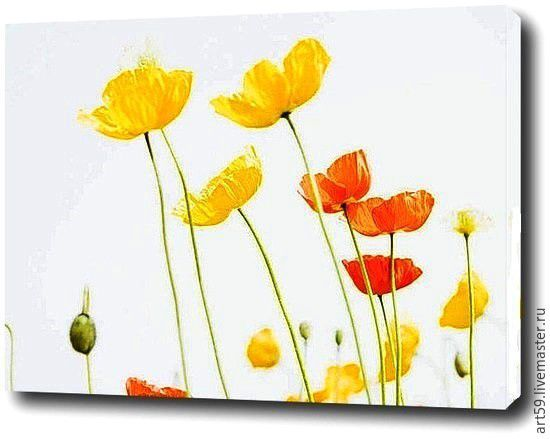 Летние цветочки, Натюрморт, Санкт-Петербург, Фото №1