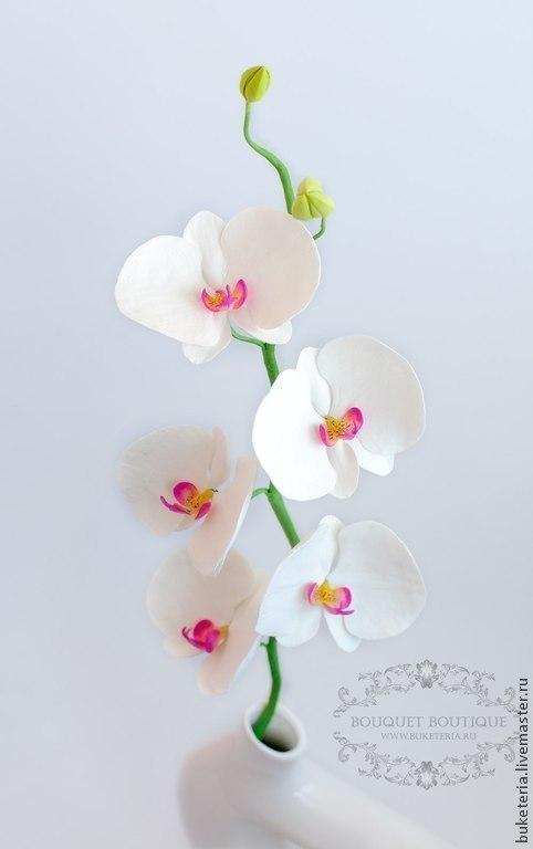 Букеты ручной работы. Ярмарка Мастеров - ручная работа. Купить Орхидея фаленопсис из полимерной глины. Handmade. Подарок для мамы