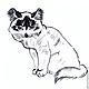 Животные ручной работы. Заказать Картина Котята рисунок углем графика кошки черно-белый. Юлия (Julrust). Ярмарка Мастеров.