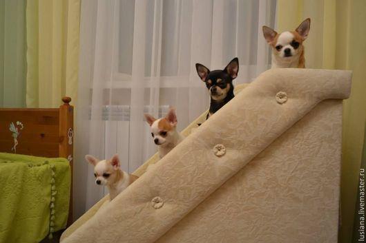 Аксессуары для собак, ручной работы. Ярмарка Мастеров - ручная работа. Купить Лесенка для собак высокая. Handmade. Лесенки для собаки