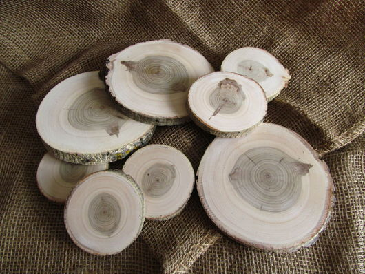 Другие виды рукоделия ручной работы. Ярмарка Мастеров - ручная работа. Купить спилы дерева. Handmade. Спилы дерева, пеньки