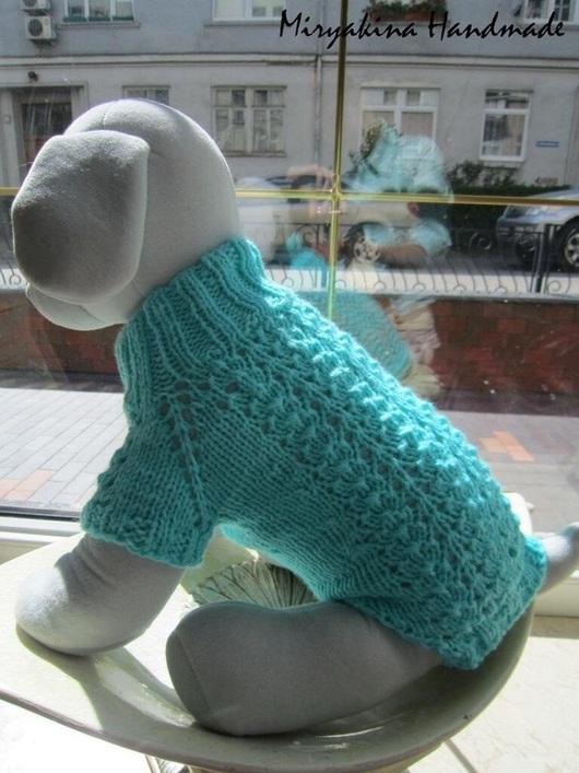 Одежда для собак, ручной работы. Ярмарка Мастеров - ручная работа. Купить Вязаный свитер для собачки. Handmade. Бирюзовый, Пряжа акриловая