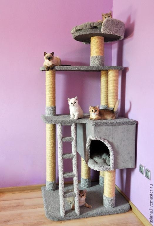 """Аксессуары для кошек, ручной работы. Ярмарка Мастеров - ручная работа. Купить Комплекс для кошек  """"Успех"""" (подходит крупным кошкам). Handmade."""