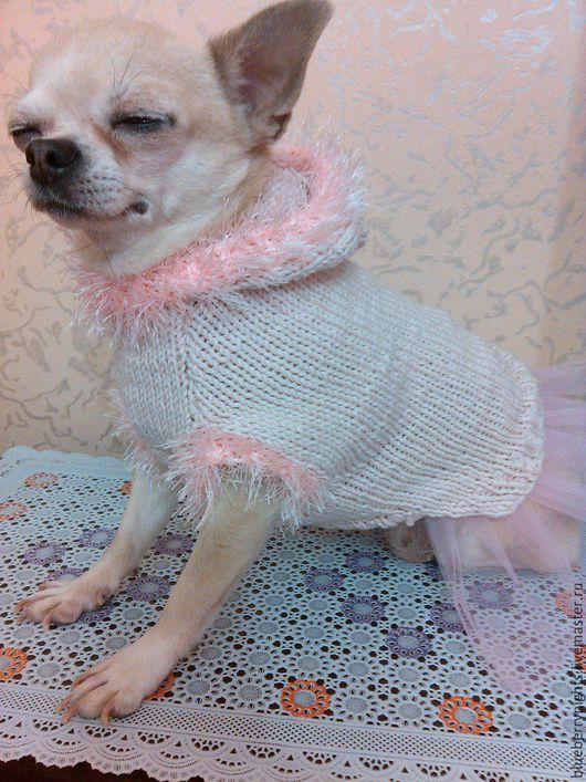 """Одежда для собак, ручной работы. Ярмарка Мастеров - ручная работа. Купить Кофточка с капюшоном для маленькой собачки """"  Молли """". Handmade."""