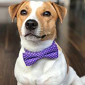 Аксессуары handmade. Livemaster - original item Bow ties for Pets. Handmade.