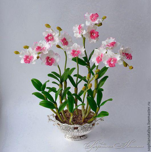 Цветы ручной работы. Ярмарка Мастеров - ручная работа. Купить Орхидея  из полимерной глины Гармония. Handmade. Орхидея
