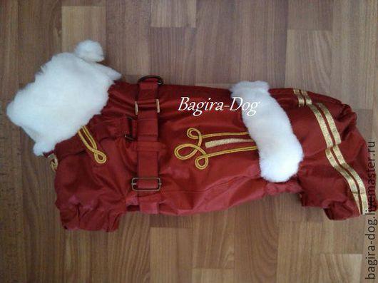 """Одежда для собак, ручной работы. Ярмарка Мастеров - ручная работа. Купить Зимний комбинезон для таксы """" Гусар """" со шлейкой. Handmade."""