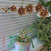 """Цветы и флористика ручной работы. Ярмарка Мастеров - ручная работа Орхидея из бисера """"Скайлер Уайт"""". Handmade."""