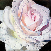 Pictures handmade. Livemaster - original item Painting with a white rose: Rose in the dew. Handmade.