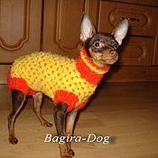 """Для домашних животных, ручной работы. Ярмарка Мастеров - ручная работа Комбинезон для собак """" Апельсинка"""". Handmade."""