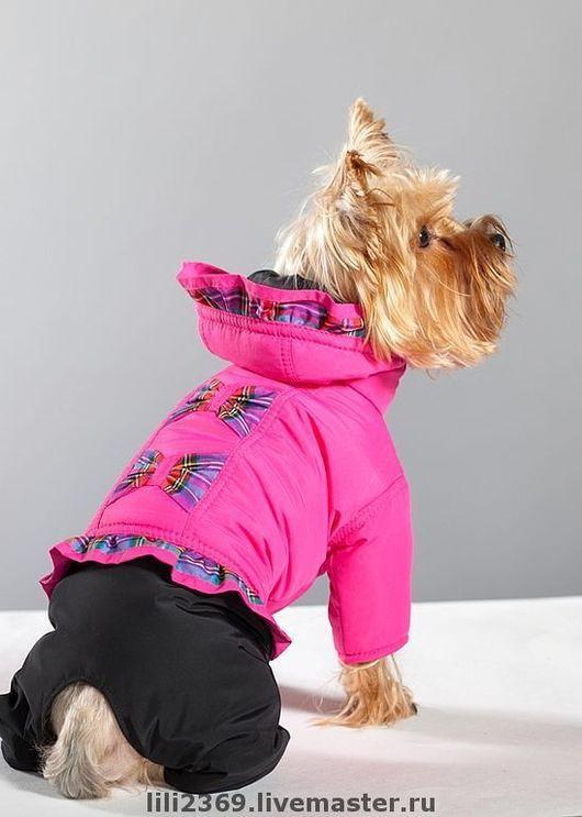 Одежда для собак, ручной работы. Ярмарка Мастеров - ручная работа. Купить Комбинезон для собаки Шотландка. Handmade. Одежда для собак, синтепон