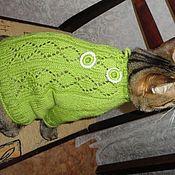 """Одежда для питомцев ручной работы. Ярмарка Мастеров - ручная работа Кофточка для котика """"зелёненькая"""". Handmade."""
