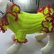 """Одежда для питомцев ручной работы. Ярмарка Мастеров - ручная работа Платье """"Ламбада"""". Handmade."""