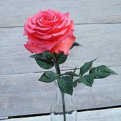 Растения ручной работы. Ярмарка Мастеров - ручная работа Роза интерьерная. Handmade.
