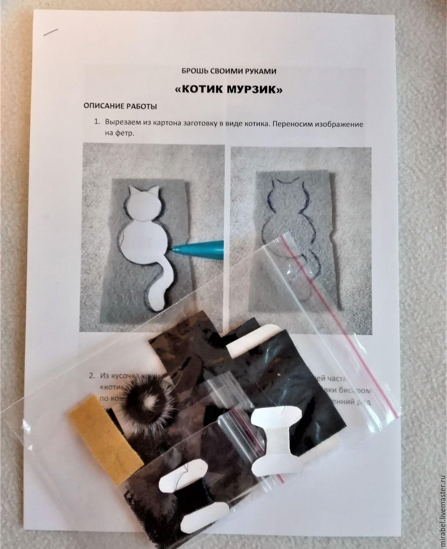Набор для творчества. Брошь.Вышивка бисером, Наборы, Москва, Фото №1