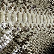 Материалы для творчества handmade. Livemaster - original item Python skin, natural shade, floor gloss finish.. Handmade.