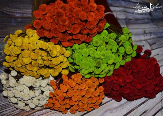 Материалы для флористики ручной работы. Ярмарка Мастеров - ручная работа. Купить Сухоцвет Button Flowers, 10 шт. Handmade.