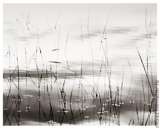 Черно белая фото картина природа для современного минималистичного интерьера «Обитель спокойствия». Спокойный абстрактный пейзаж. Постер на стену